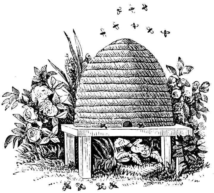 mason beehive