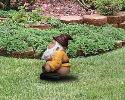 6a pooping-garden-gnome-0